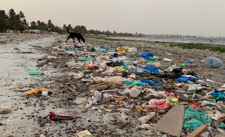 Le projet de dépollution de la baie de Hann se trouve dans sa phase active