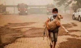 Quatrième jour de lutte contre les feux de forêt dans le sud de la Turquie