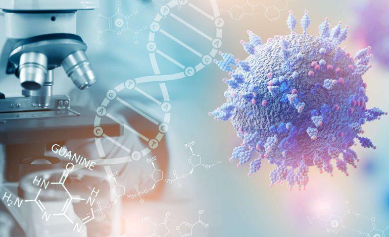 Une nouvelle mutation du virus de la Covid-19 apparue en Afrique du Sud inquiète les scientifiques
