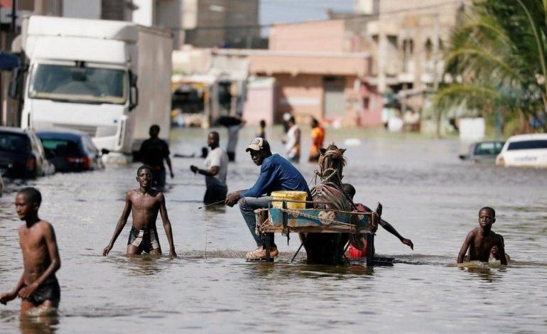 Pour faire face aux inondations au Sénégal, le plan ORSEC déclenché