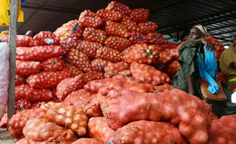 Trop d'oignons font pleurer les producteurs sénégalais