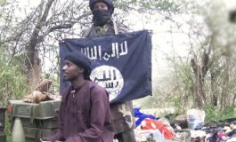 L'armée nigériane annonce la mort d'Al-Barnawi, chef local de l'EI