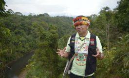 """La destruction de l'Amazonie provoquerait une """"apocalypse"""" mondiale"""